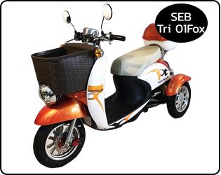 จักรยาน 3 ล้อไฟฟ้า SEB-TRI01Fox