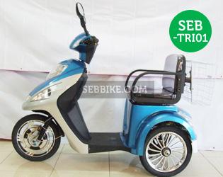 จักรยาน 3 ล้อไฟฟ้า SEB-TRI01